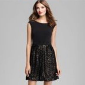Laundry Shelley Segal Little black dress 2